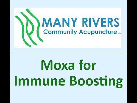 Moxa for Immune Boosting