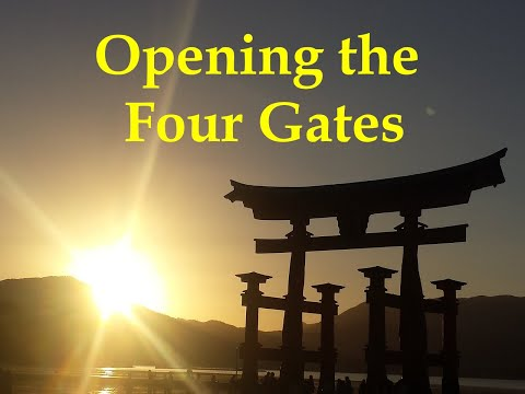 The Four Gates for Immunity, Circulation and Pain