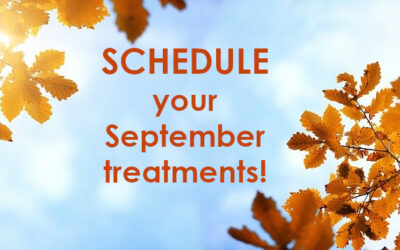 Our September schedule is OPEN!